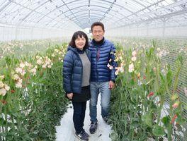 佐賀新聞社賞を受賞した木下重信さんと寿子さん。高品質のスイートピーを生産し、産地のリーダーとして技術向上に力を入れる=杵島郡白石町
