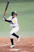練習試合で打席に立つ小峰渉央君=福岡県筑後市のホークス2、3軍球場(家族提供)