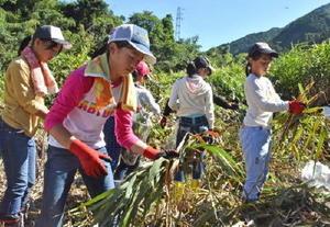 草刈りをして水面をつくる作業に取り組む児童・生徒=佐賀市富士町