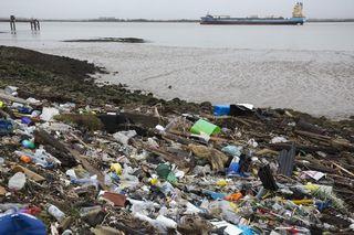 使い捨てプラ容器追放へ EU