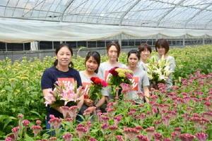 両親が経営する「明日香園」を総務部長として支える向井明日香さん(左)。ハウス内にはこの時期、色とりどりのケイトウが咲き誇る=藤津郡太良町