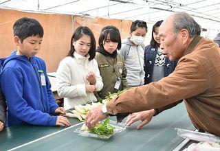 佐賀のニュース 富士小児童「七草」学ぶ