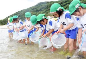 ヒラメの稚魚を放流する園児たち=唐津市の北浜海水浴場