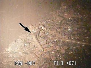 福島2号機で溶融核燃料初確認