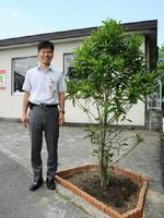 「郵便局の木」といわれるタラヨウの木を植樹した石原資展局長=佐賀市の佐賀八戸溝郵便局