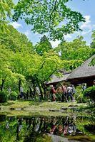 九年庵の一般公開が始まり、青空の下、新緑に包まれた庭園を楽しむ観光客=3日午前、神埼市神埼町