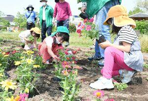 花の植え方を教わり、自分たちで植えていく園児=佐賀市の本庄公園