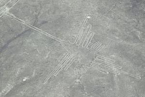 南米ペルーの世界遺産「ナスカの地上絵」=2010年9月(ロイター=共同)