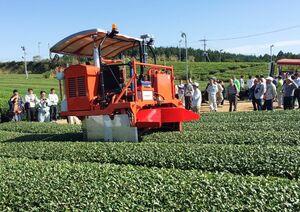 茶園団地で最新の無人収穫機の実演を見学する参加者=嬉野市嬉野町の陣野地区