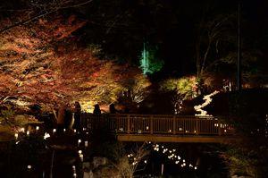 幻想的な竹灯りとライトアップされた紅葉、滝のコラボレーションが美しい「清水竹灯り」=小城市
