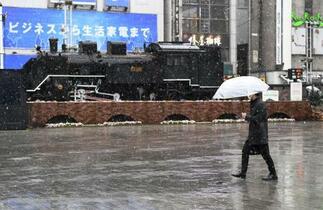 関東甲信、花冷えの雪