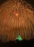 唐津城に降り注ぐように開く二尺玉花火=15日夜、唐津市の舞鶴橋から撮影