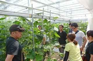 施設園芸の環境制御視察 武雄で九州の農家研修