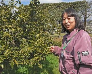 躍動!農業女子(10) 野口真弓さん(35)県果樹試験場