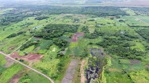 上空から見た「アグアダ・フェニックス遺跡」一帯(猪俣健・米アリゾナ大教授提供)