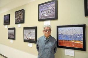 東与賀海岸に飛来する野鳥の写真展を開いている栗山千速さん=佐賀市のエスプラッツ2階