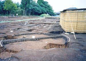 弥生中期の集落跡
