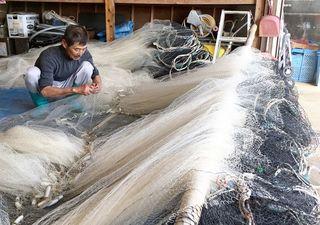 諫早湾干拓事業 タイラギ休漁に焦燥感