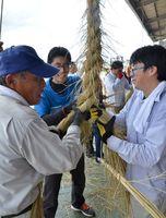 できあがった全長30メートルを超える縄を切り整える町民たち=基山町宮浦の共同乾燥場