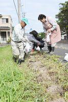 通学路に花の球根を植える梶原地区の住民たち=唐津市鏡