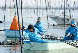 雪が舞う中、冷凍網を張り込む漁業者=佐賀市東与賀町沖の有明海