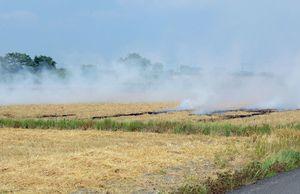 麦わらの焼却率は年々減少しているが、依然として野焼きをしている地域も見られる=2017年5月、佐賀県内