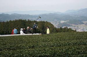 嬉野市内の茶畑などで撮影されている(提供写真)