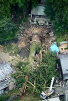 倒れた「神明神社」の境内の杉=12日午後0時12分、岐阜県瑞浪市(共同通信社ヘリから)