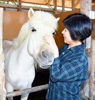 馬と触れ合う「ひろば」社長の井手直美さん=佐賀市大和町