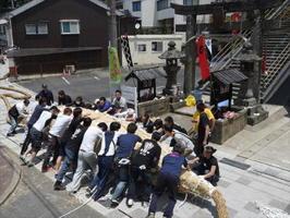 呼子大綱引の初日、若衆たちが力を合わせて、「大人綱」の中心部となるミト作りに汗を流す=唐津市呼子町の呼子三神社前