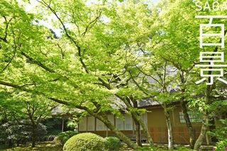 SAGA百景  【神埼・吉野ヶ里編】新スポットを巡る一日