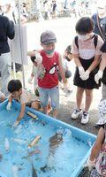 森川海人っフェスで、海の生き物に触れる子どもたち=鹿島市