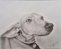 Fukuさんが描いた鉛筆画