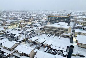 屋根などに雪が積もり、一面が白くなった住宅地=8日午前7時ごろ、佐賀市日の出周辺