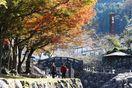 焼き物の里晩秋の彩り 大川内山(伊万里市)