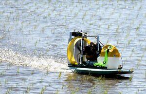 田植えを終えたばかりの田んぼに除草剤を散布する無人ボート=三養基郡上峰町九丁分地区