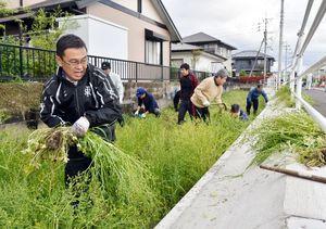 「川を愛する週間」に合わせて、クリークの雑草を刈り取る住民たち=佐賀市天祐2丁目