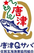 ユーチューバー「釣りいろは」さん「唐津Qサバ」動画公開へ