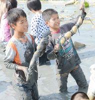 掘り起こしたレンコンを自慢げに掲げる子どもたち=江北町佐留志