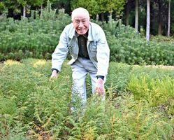 長年の苗木生産が評価され、全国育樹活動コンクールで農林水産大臣賞を受賞した松尾正登さん=伊万里市松浦町