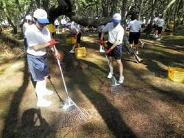 年に一度、虹の松原の清掃保全活動に取り組む唐津商の生徒たち(提供)
