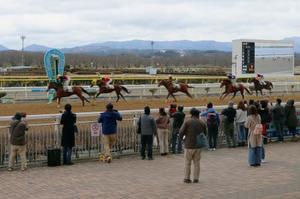 再開された水沢競馬場でのレース=23日午前、岩手県奥州市