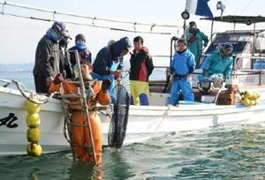 潜水士の網にはタイラギが入っておらず、関係者からため息が漏れる=大牟田沖の有明海