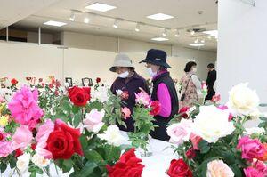 約300輪のバラの花が訪れる人を楽しませている