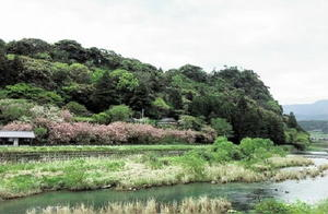 唐船城の近景