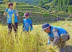 蕨野の棚田で稲刈りを体験する参加者=唐津市相知町