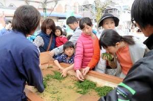 蒸した茶を乾燥させる手もみを体験しながら香りを楽しむ来場者=嬉野市の湯遊広場