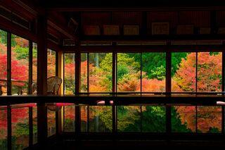 SAGA百景【厳木編】錦織りなす自然美と万葉ロマンあふれる厳木の秋