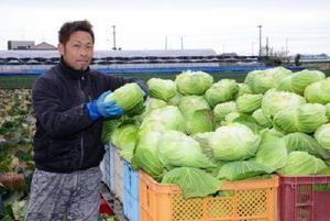 「就農当初は米麦中心だったが、徐々に単価の良い葉物野菜にシフトしてきた」と語る木室哲郎さん=杵島郡白石町