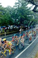 平成この日 虹の松原でトライアスロン 平成12年6月25…